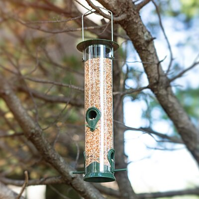 Sorbus Tube Bird Feeder