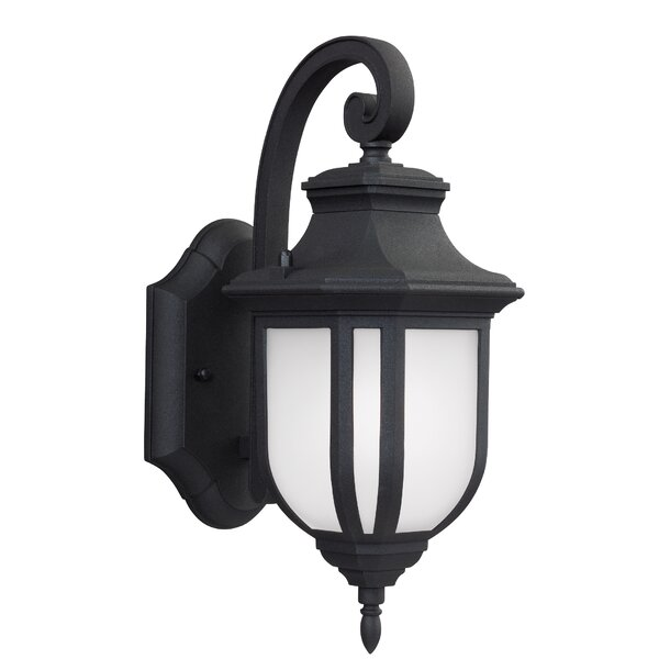 Teri 1-Light Outdoor Wall Lantern by Fleur De Lis Living