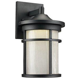 Ilene 1-Light Outdoor Wall Lantern
