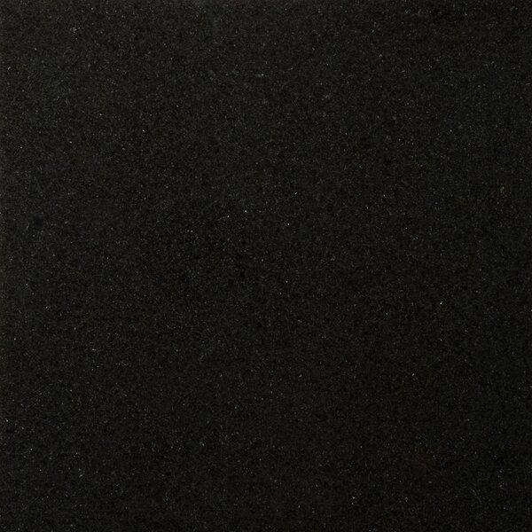 Granite 18 x 18 Field Tile in Absolute Black by Emser Tile