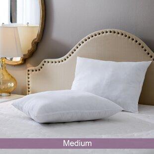 Wayfair Basics Medium Pillow Set Of 2