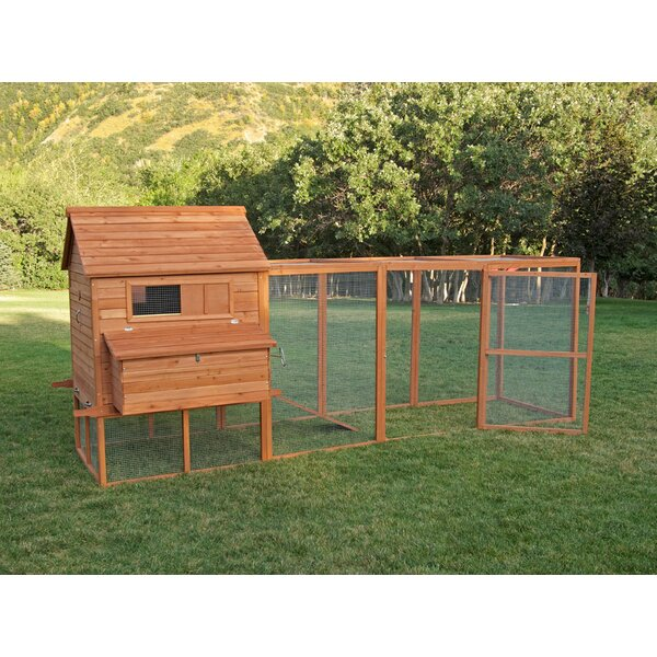 Ranch Chicken Coop with Roosting Bar by Chicken Saloon