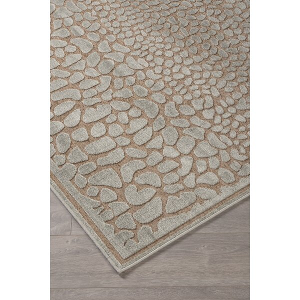 Cetus Ivory Area Rug by Orren Ellis