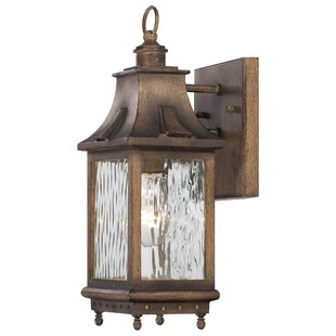 Reviews Danville 1-Light Outdoor Wall Lantern By Darby Home Co