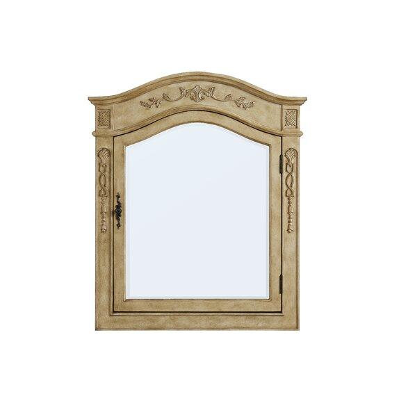 Isadora Surface Mount Framed Medicine Cabinet with 2 Shelves Astoria Grand ARGD8817