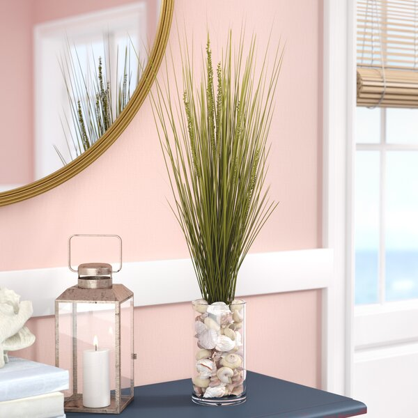 Dune Grass in Round Glass Vase by Beachcrest Home