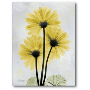 'Golden Flower II' Graphic Art on Wrapped Canvas by Winston Porter