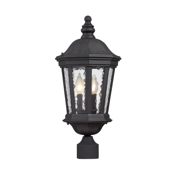 Alorton Run Outdoor 2-Light Lantern Head by Fleur De Lis Living