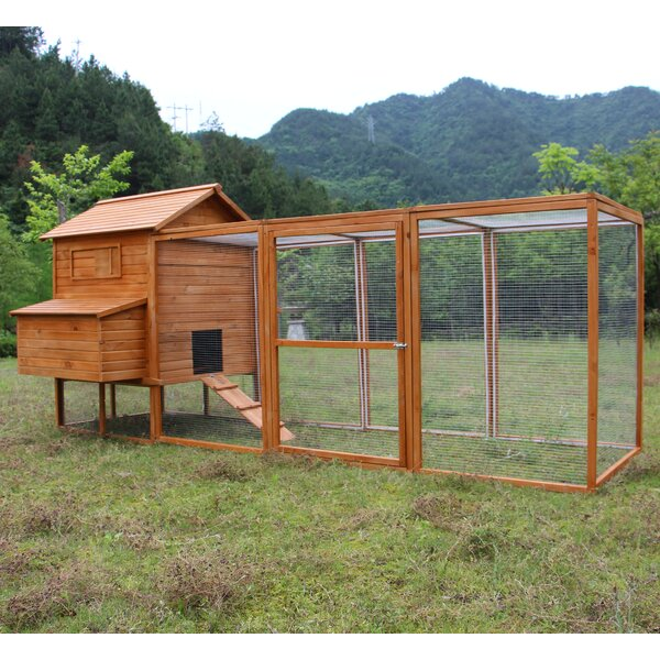 Clarence Hen Chicken Coop with Chicken Run by Arch
