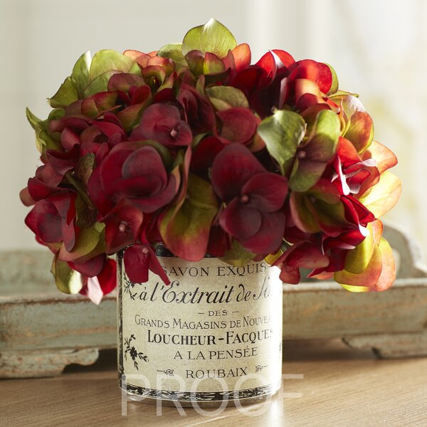 Burgundy Hydrangea in French Label Pot by Lark Manor