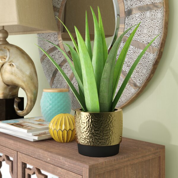 Artificial Desktop Succulent Agave Plant in Pot by Trent Austin Design
