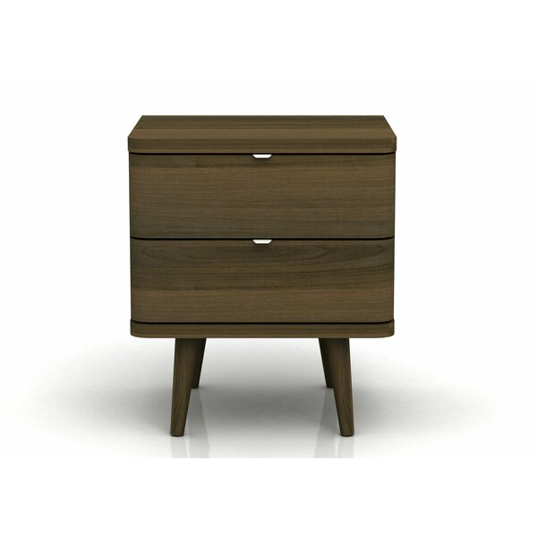 Austin 2 Drawer Nightstand by Langley Street