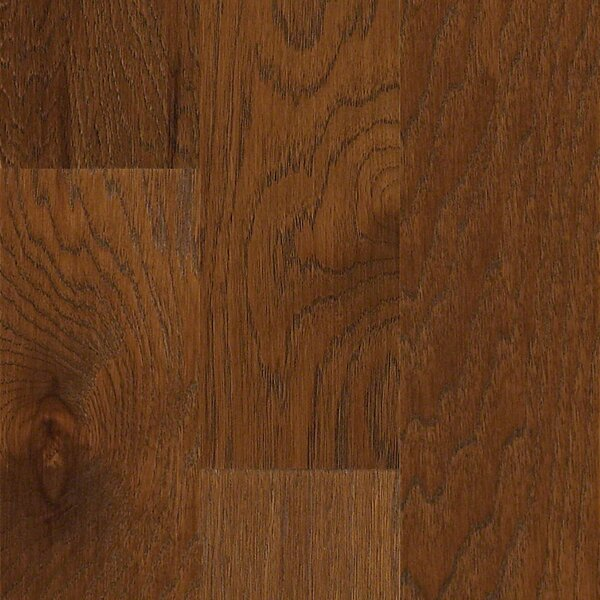 Globe 5 Engineered Hickory Hardwood Flooring in Medford by Shaw Floors