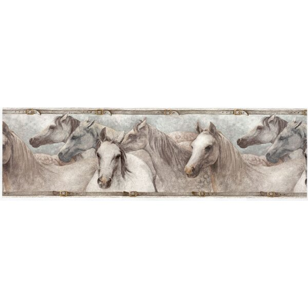 Horses Satin Wallpaper Border by Houston International