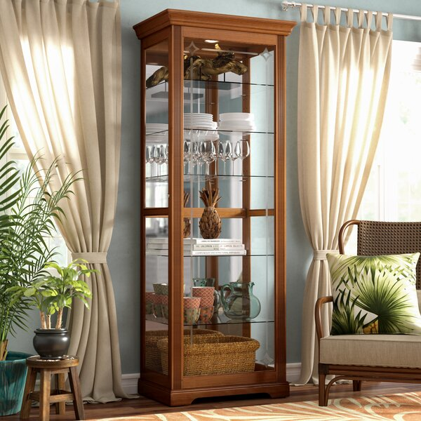 Logan Ryleigh Lighted Curio Cabinet by Beachcrest Home
