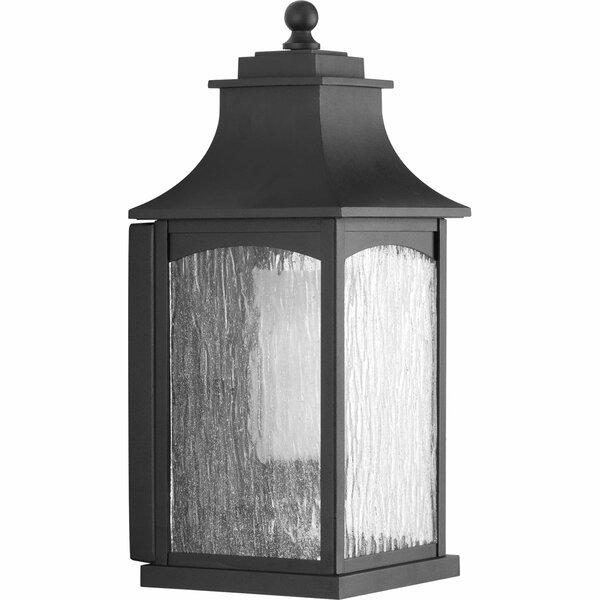 De Witt 1-Light Wall Lantern by Darby Home Co