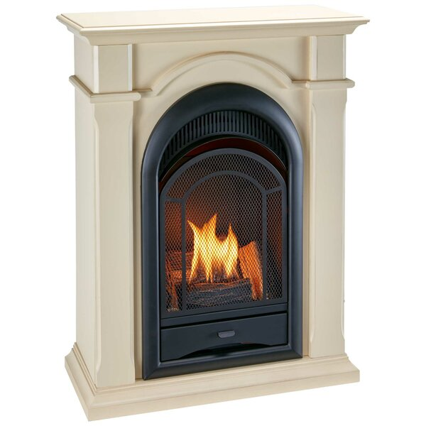 Dual System Vent-Free Natural Gas/Propane Fireplace By ProCom