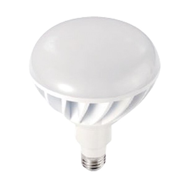12W 120-Volt (2700K) LED Light Bulb by Sea Gull Lighting