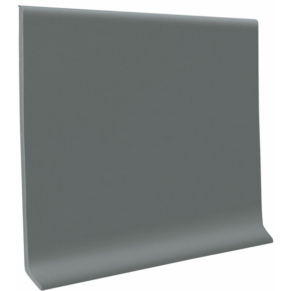 0.13 x 48 x 4 Cove Molding in Dark Gray (Set of 30) by ROPPE