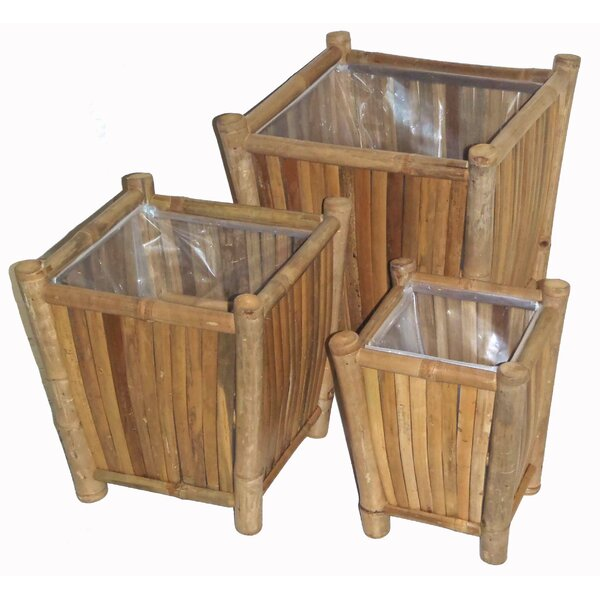Porter 3 Piece Bamboo Pot Planter Set by Bay Isle Home
