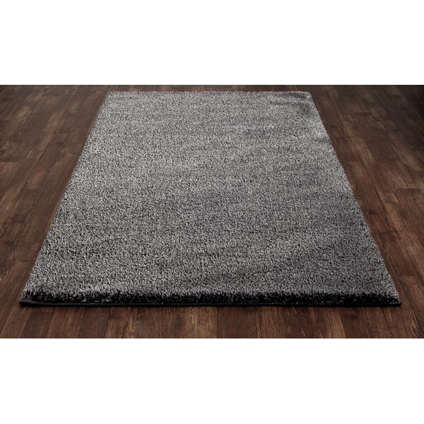 Hickey Plush Pile Shag Gray Pewter Area Rug by Winston Porter