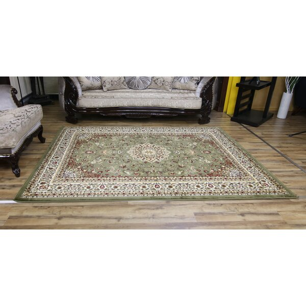 Super Belkis Green/Beige Area Rug by Beyan Signature