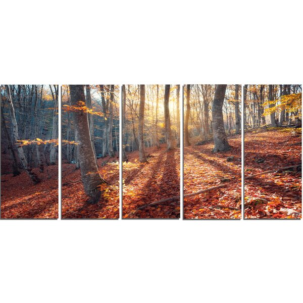 Crimean Mountains Tree Shade 5 Piece Photographic Print on Wrapped Canvas Set by Design Art