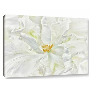 'White Parrot Tulip' Photographic Print on Wrapped Canvas by Willa Arlo Interiors