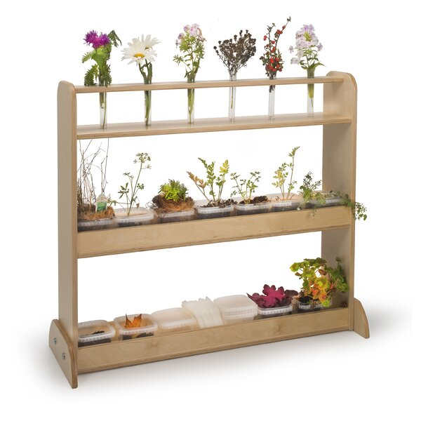Nature Double Sided 3 Compartment Shelving Unit by Whitney Brothers