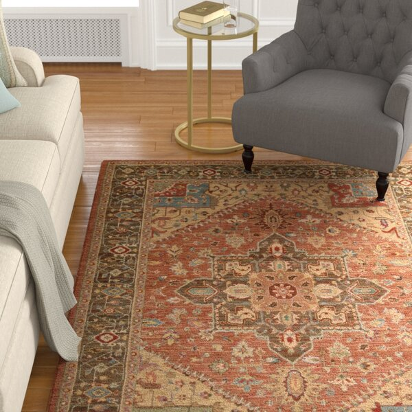 Crownover Rust Area Rug by Darby Home Co