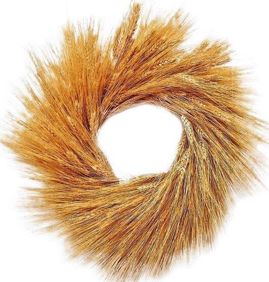 Glorious 19 Wheat Wreath by August Grove