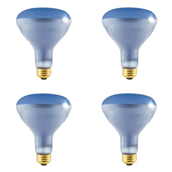 150W E26 Dimmable Incandescent Spotlight Light Bulb (Set of 4) by Bulbrite Industries