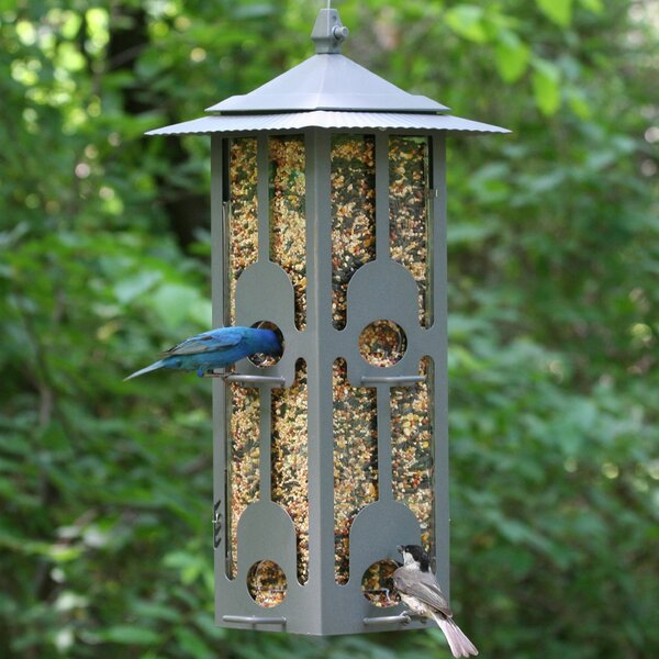 Squirrel-Be-Gone Hopper Bird Feeder by Birdscapes