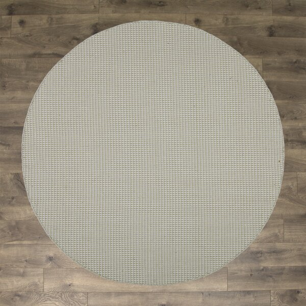 Iggy Hand-Woven Cotton Olive Area Rug by Birch Lane™