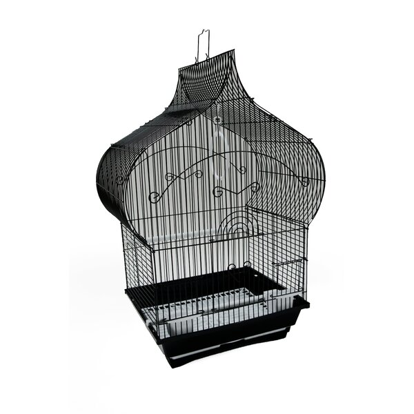 Oppenheimer Taj Mahal Top Shape Bird Cage by Tucker Murphy Pet