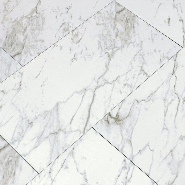 Carrara 12 x 24 Porcelain Field Tile in White by MSI