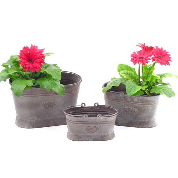 Younkin Oval 3-Piece Iron Pot Planter Set with Handle by Gracie Oaks