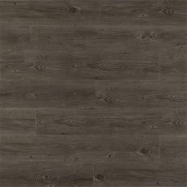 Blaire PVC Click Lock 6 x 48 x 4mm Luxury Vinyl Plank in Palm Gray by Le Dalmar