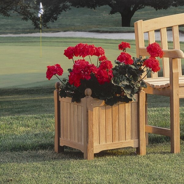 Harpersfield Shorea Wood Planter Box by Beachcrest Home