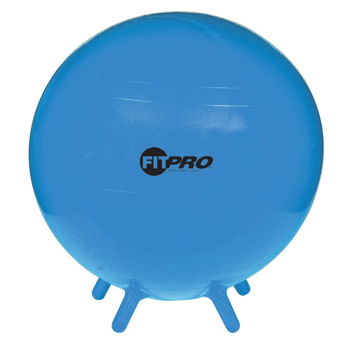Bushman Ergonomic Ball Chair