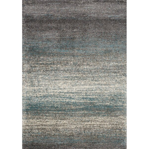 Bunderberg Distressed Stripes Soft Touch Gray/Blue Area Rug by Latitude Run