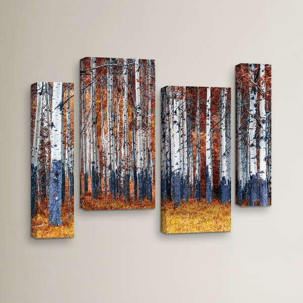 Autumn Forest 4 Piece Photographic Print on Wrapped Canvas Set by Red Barrel Studio