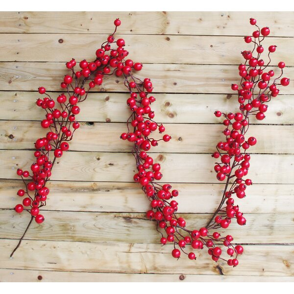 Cranberry Garland by The Holiday Aisle