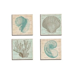 'Sea Study Coral' 4 Piece Graphic Art on Wrapped Canvas Set by Beachcrest Home