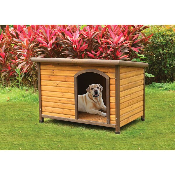 Munroe Dog House by Tucker Murphy Pet