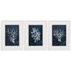 'Wood Coral' 3 Piece Framed Graphic Art Set in Blue by Beachcrest Home