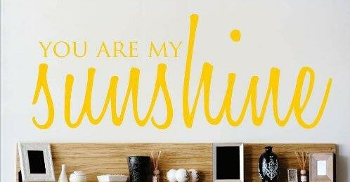 You are My Sunshine Love Life Song Quote Wall Decal by Design With Vinyl