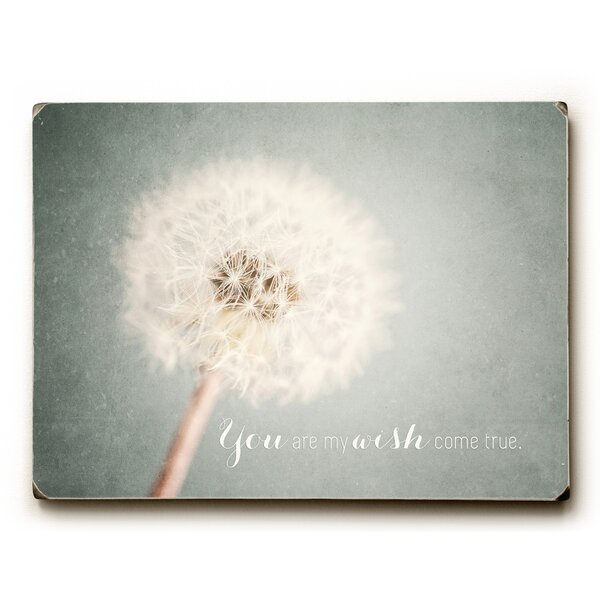 Wish Come True Photographic Print by Artehouse LLC