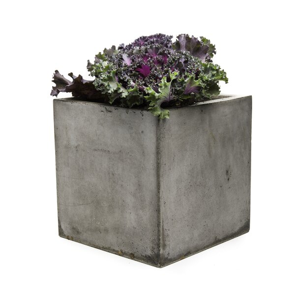 Cub Composite  Planter Box by My Spirit Garden