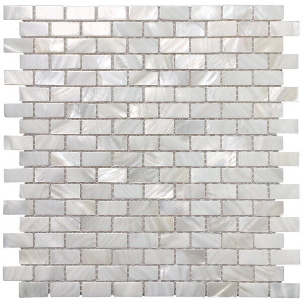 0.6 x 1.2 Seashell Mosaic Tile in White Opal by Art3d